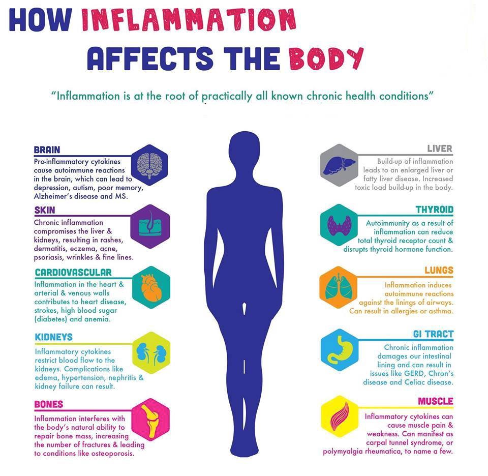 What is inflammation, and how does it affect us? - Hannah Kurian ...